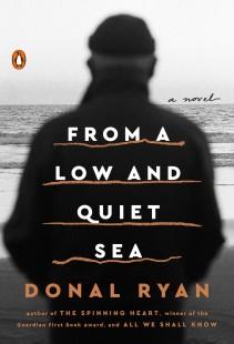 Donal Ryan Cover